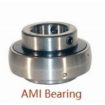 AMI UCNFL208-25B Bearings