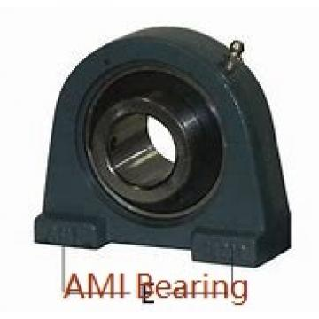 AMI UC206-19C4HR23 Bearings