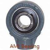 AMI UETBL205-15CEB Bearings