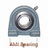 AMI UCPPL206-19MZ20RFB Bearings